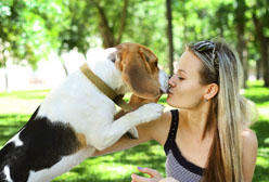 Newsflash: Your Dog and Boyfriend Have a Lot in Common!